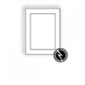 Ultra-White Baronial Panel Card
